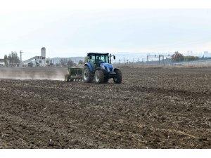 Macar fiğ tohumu desteği için başvuru rekoru
