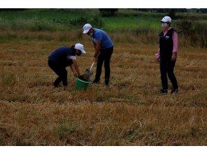 Sürdürülebilir tarım için toprak analizi yapıldı