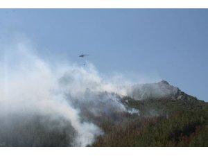Yıldırım düştü, 3 hektarlık ormanlık alan yandı