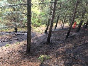 Kazdağların'da orman yangını havadan müdahale ile söndürüldü