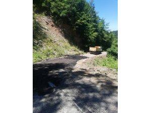Cide'de heyelan nedeniyle bozulan yollar onarılıyor