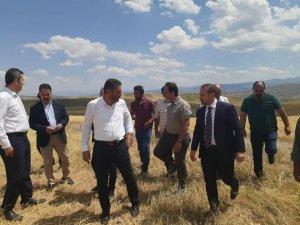 Milletvekili Çakır, Çayırlı'da ekinleri zarar gören çiftçileri ziyaret etti