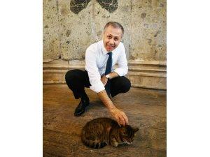 Vali Yerlikaya Ayasofya'nın meşhur kedisiyle ilgilendi
