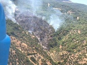 Efeler Yeniköy'de orman yangını