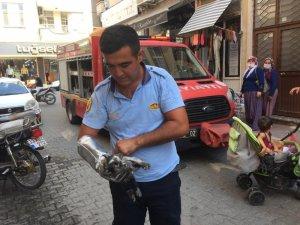 Motosiklet kaportasına sıkışan kediyi itfaiye çıkardı