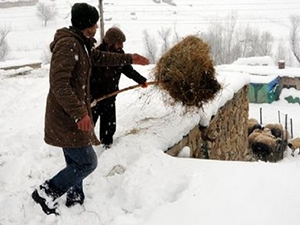 Doğu da Kar Yağışı Etkisini Artırdı
