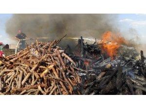 Yol kenarına atılan sigara izmariti 10 ton odunu küle çevirdi