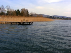 Sapanca gölü kuruyor