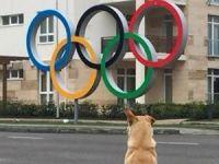 Rusya'da olimpiyat skandalları bitmiyor