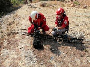 Kayalıklarda mahsur kalan yavru keçi AKUT ekiplerince kurtarıldı