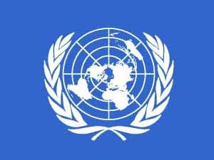 BM'den internet düzenlemesine eleştiri!