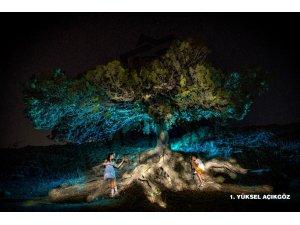 'Meram'da Yaz' Fotoğraf Yarışmasında ödül sahipleri belirlendi
