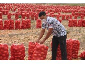 Soğan tarlasından milli takıma