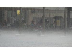 Ordu'da yağışlar yüzde 8 arttı