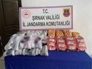 Şırnak'ta kaçakçılık operasyonu: 66 gözaltı