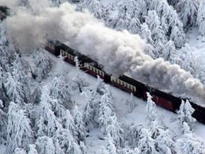 Avusturya'da tren seferleri durdu