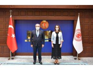 TBMM Başkanı Mustafa Şentop ve Parlamentolararası Birlik Başkanı Gabriela Cuevas Barron bir araya geldi