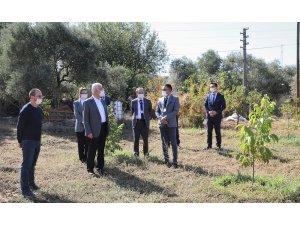 """Başkan Gürün, """"Muğla turizmden daha fazlasını tarımdan kazanabilir"""""""