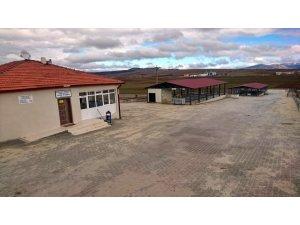 Aslanapa'da hayvan pazarı ve ilçe halk pazarı kapatıldı