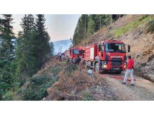 """Vali Taşbilek: """"Örümcek Ormanları'ndaki yangın kontrol altına alınma seviyesinde"""""""