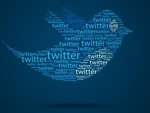 Anayasa Mahkemesi'nden twitter kararı