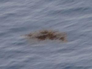 Kayıp uçaktan yeni parçalar bulundu