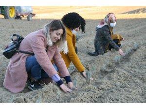 Silvan'da lavantalar kadın eliyle toprakla buluştu