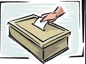 Zihinsel engellilerin oy kullandığı seçim iptal edildi