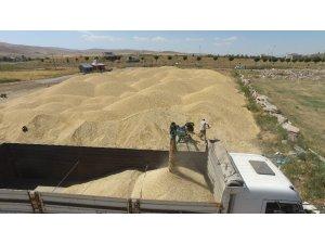Erzincan, Erzurum ve Ağrı'da sulama sezonu tamamlandı