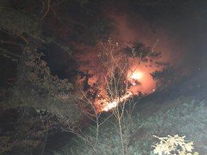 Kastamonu'daki orman yangını yerleşim yerlerini tehdit ediyor