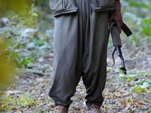 Siirt'te bir terörist teslim oldu