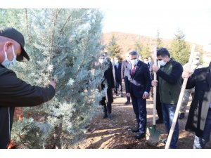 """Tunceli'de """"Kahraman Sağlık Çalışanları Hatıra Ormanı"""" oluşturuldu"""