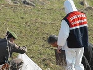Edirne'de çalılıkların içinde 4 ceset bulundu