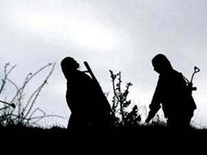 Kaçırılan 3 köy korucusu serbest bırakıldı
