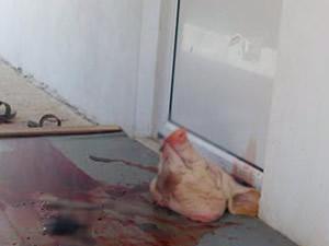 Yunanistan'da bir mescidin önüne domuz başı bırakıldı