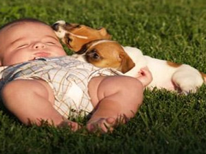 Öğle uykusunu sevenler dikkat!
