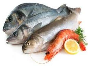 Hamilelik boyunca balık tüketilmemeli