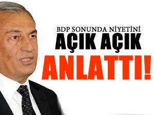 İşte BDP'nin hedeflediği özerklik 'hayali'