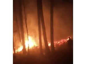 Orman yangınını köylüler söndürdü