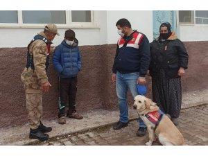 Kayıp çocuğu 6 saat sonra iz takip köpeği buldu