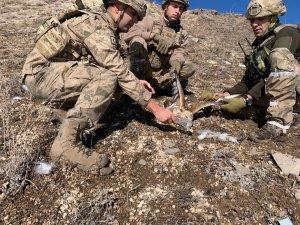 Jandarma komandolardan yaralı şahine şefkat eli