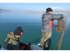 Türkiye'de kerevit üretiminin yüzde 80'i Eğirdir Gölü'nden karşılanıyor