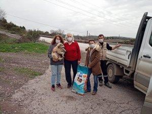 Büyükşehir, sokak hayvanları için 1,5 ton mama dağıttı