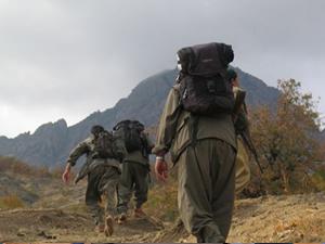 PKK'lı teslim oldu
