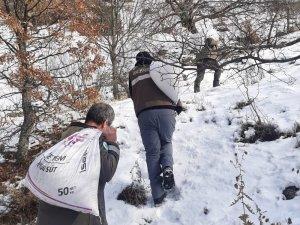 Tunceli'de yaban hayvanları için doğaya 6 ton yem bırakıldı