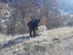 Gönüllü olarak hem sokak hayvanları hem de ihtiyaç sahipleri için çalışıyor