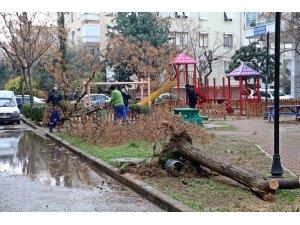 Antalya'da yarın için kuvvetli fırtına uyarısı