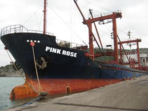 Türk gemisi Yunanistan'da tutuklandı
