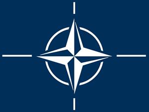 NATO'dan Vladimir Putin açıklaması