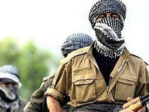 Terör Örgütü'nün kaçırdığı muhtar serbest